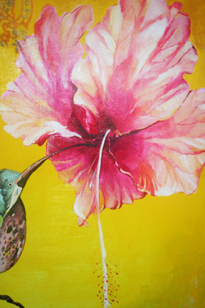 Hibiscus peek