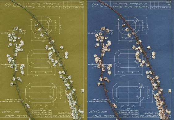 Anahata-blueprints