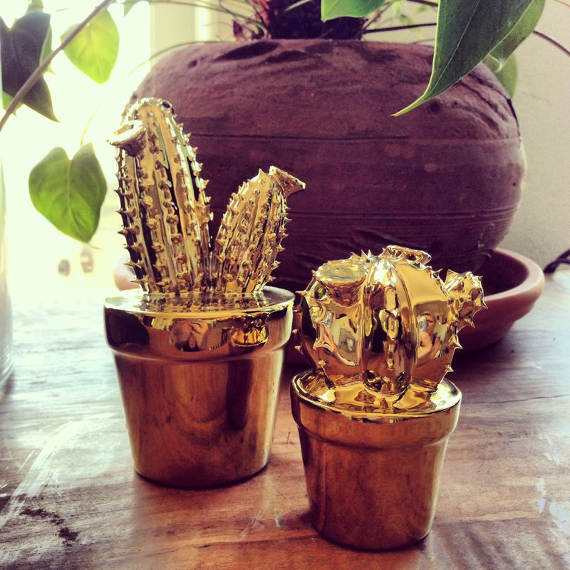 Metallic cacti anahata katkin