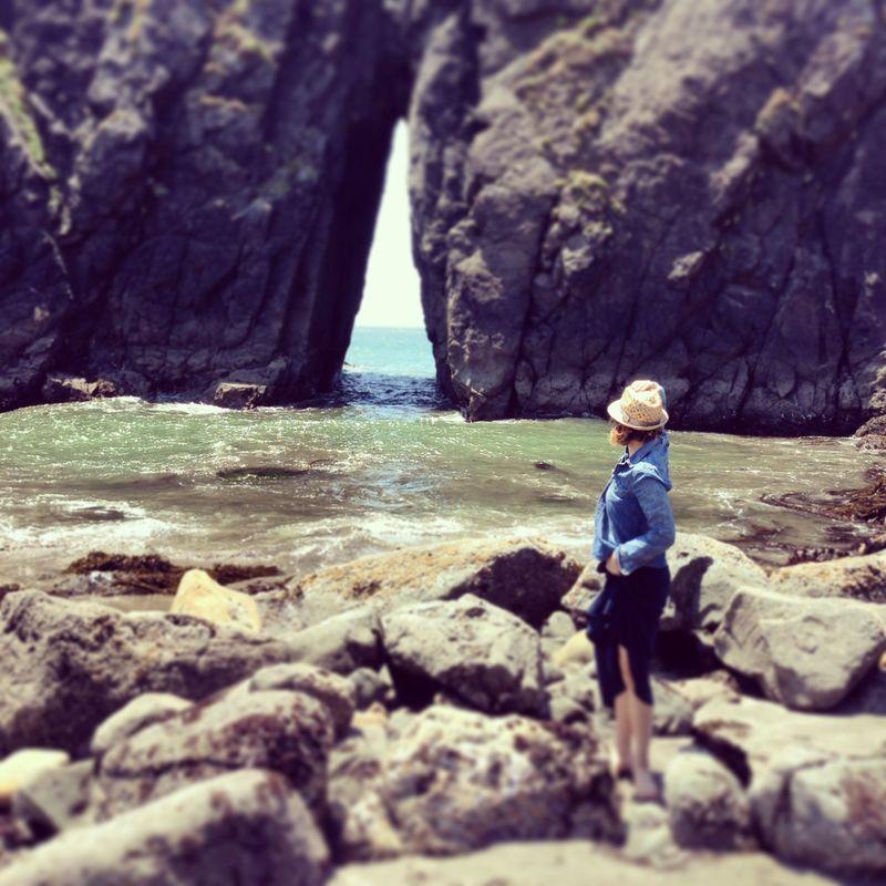Oregon Coast - harris beach