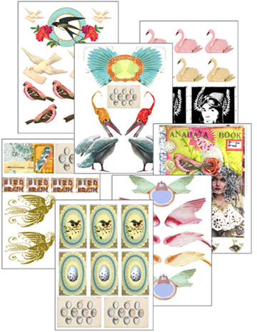Bird_sample_pages