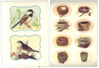 Bird_stickers
