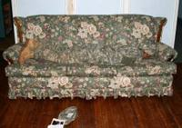 Camocouch1130